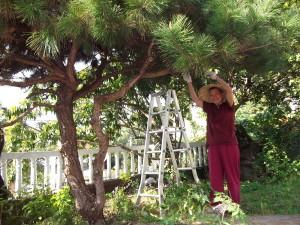 Meditate in Taiwan-working visit